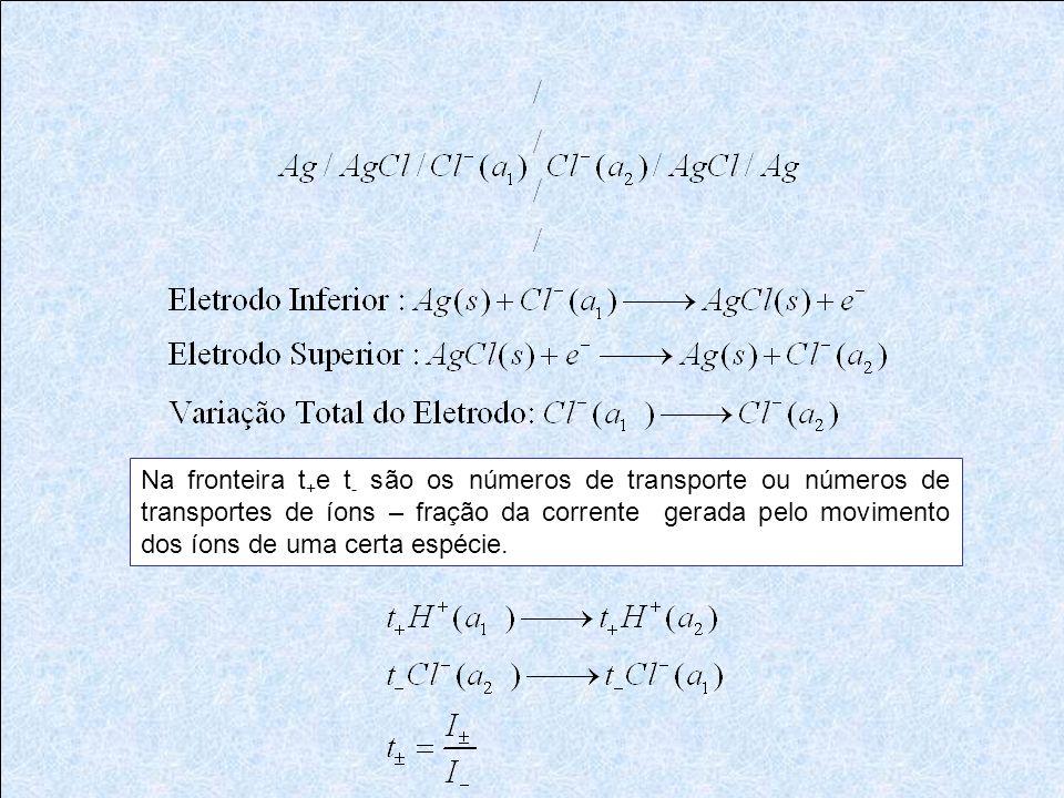 Na fronteira t+e t- são os números de transporte ou números de transportes de íons – fração da corrente gerada pelo movimento dos íons de uma certa espécie.