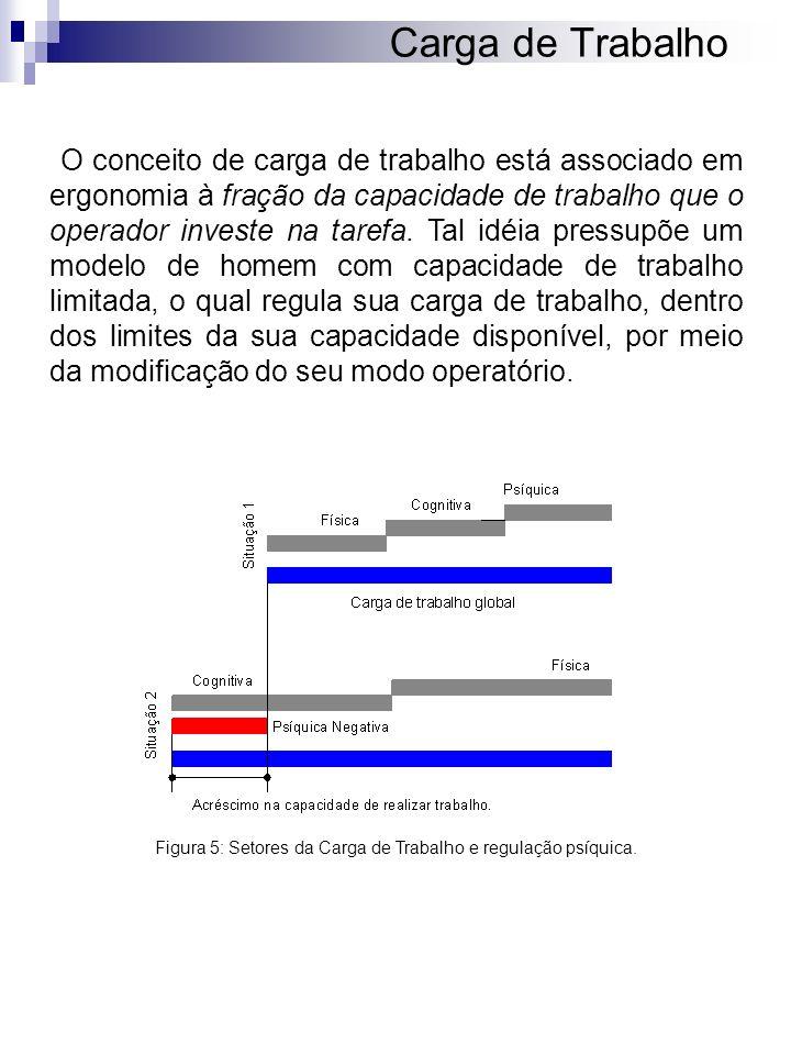 Figura 5: Setores da Carga de Trabalho e regulação psíquica.
