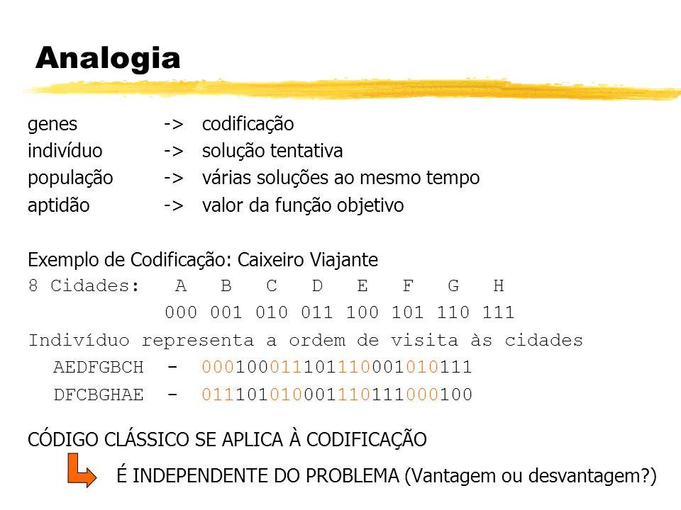 Analogia genes -> codificação indivíduo -> solução tentativa