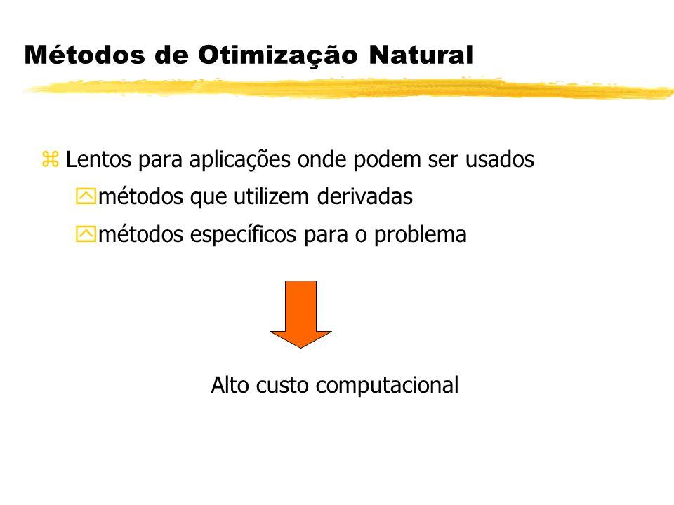 Métodos de Otimização Natural