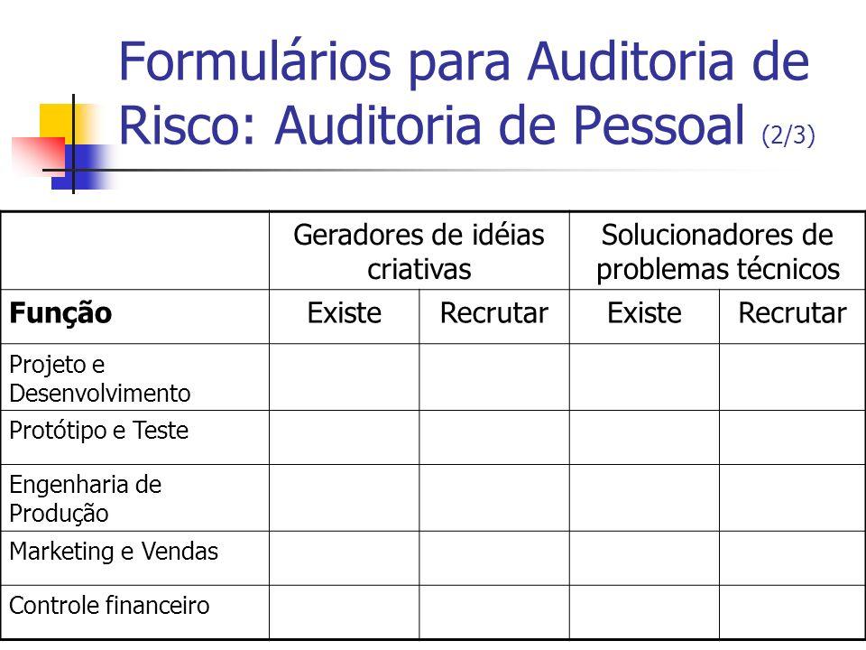 Formulários para Auditoria de Risco: Auditoria de Pessoal (2/3)