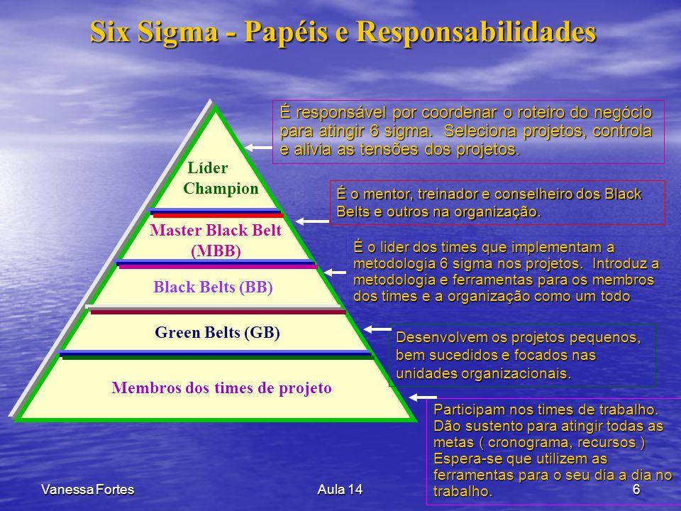 Six Sigma - Papéis e Responsabilidades