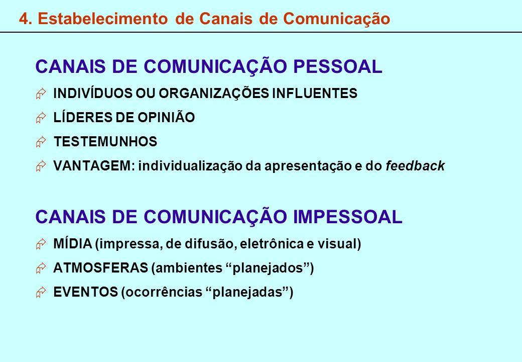 4. Estabelecimento de Canais de Comunicação