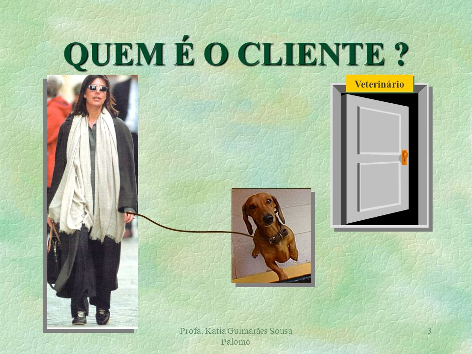 Profa. Katia Guimarães Sousa Palomo