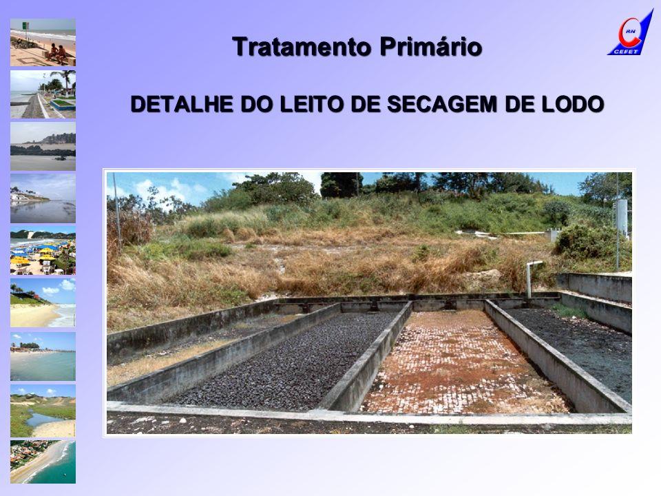 DETALHE DO LEITO DE SECAGEM DE LODO