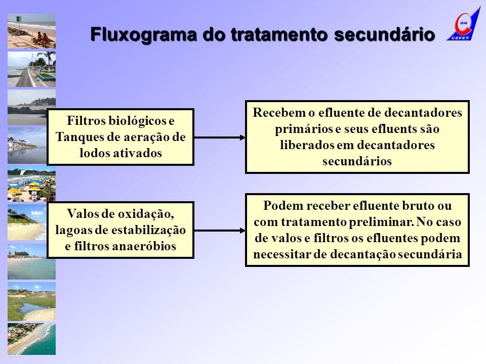 Fluxograma do tratamento secundário