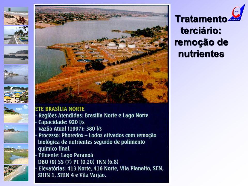 Tratamento terciário: remoção de nutrientes