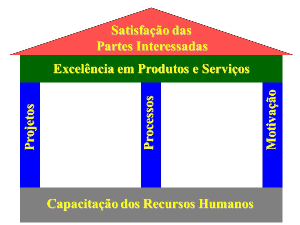 Satisfação das Partes Interessadas. Excelência em Produtos e Serviços. Motivação. Processos. Projetos.