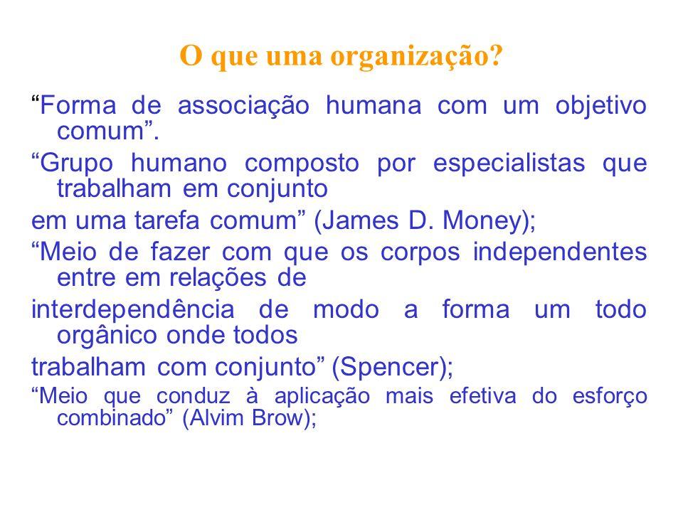 O que uma organização Forma de associação humana com um objetivo comum . Grupo humano composto por especialistas que trabalham em conjunto.