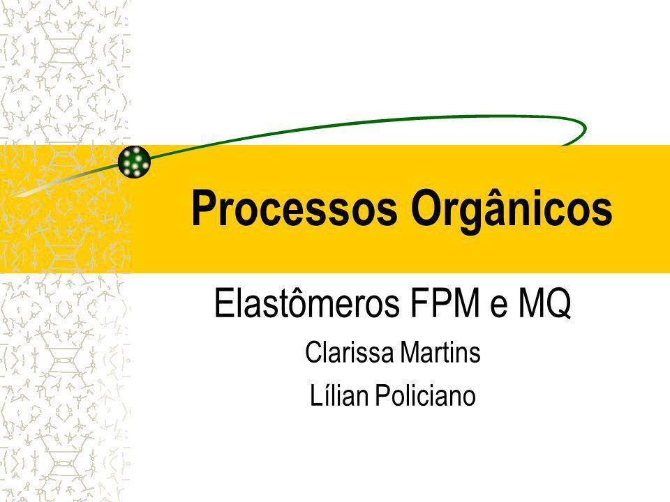 Elastômeros FPM e MQ Clarissa Martins Lílian Policiano
