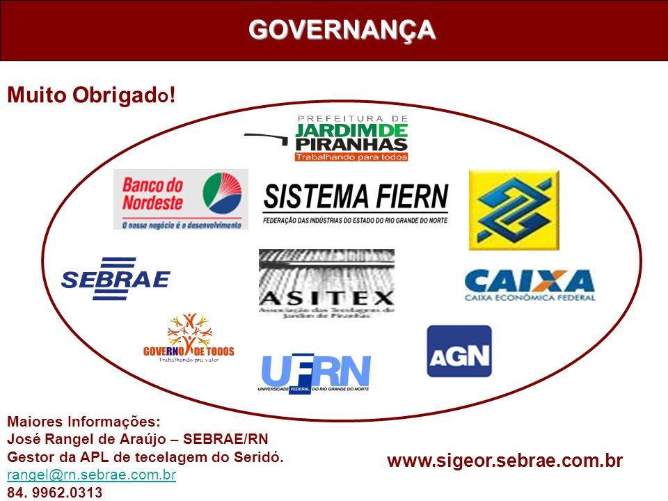 GOVERNANÇA Muito Obrigado! www.sigeor.sebrae.com.br