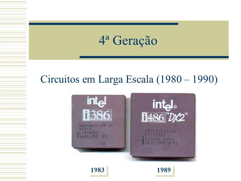 Circuitos em Larga Escala (1980 – 1990)