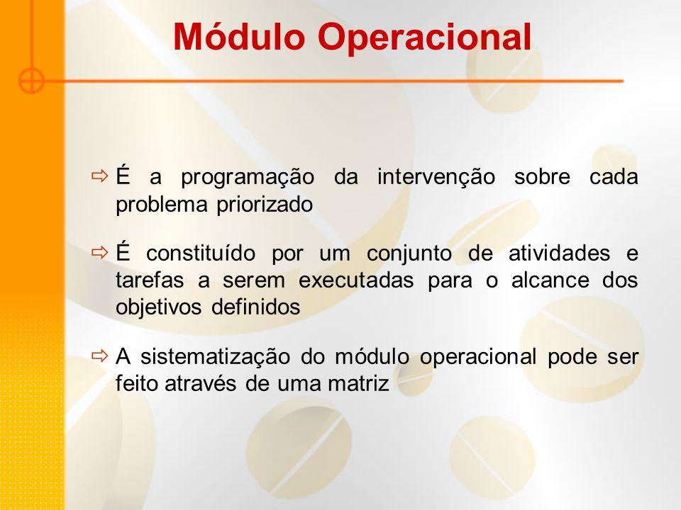 Módulo Operacional É a programação da intervenção sobre cada problema priorizado.