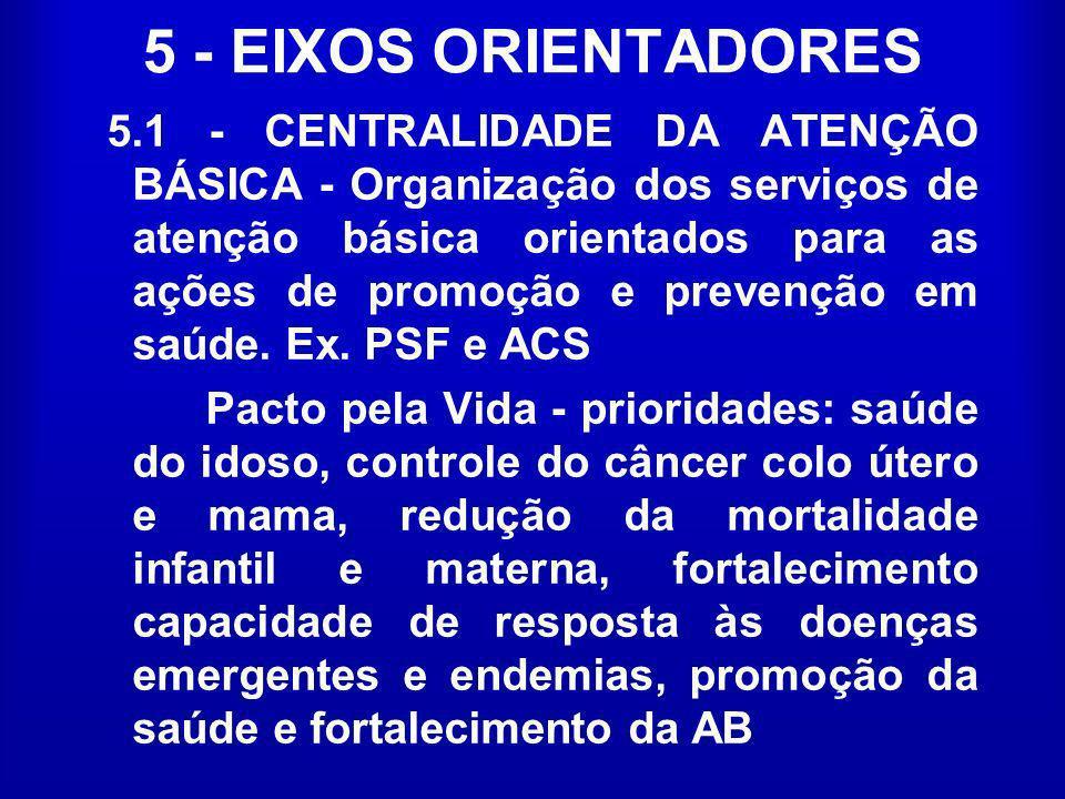5 - EIXOS ORIENTADORES
