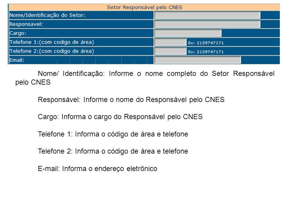 Nome/ Identificação: Informe o nome completo do Setor Responsável pelo CNES