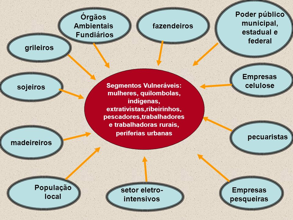 Poder público municipal, estadual e federal setor eletro-intensivos