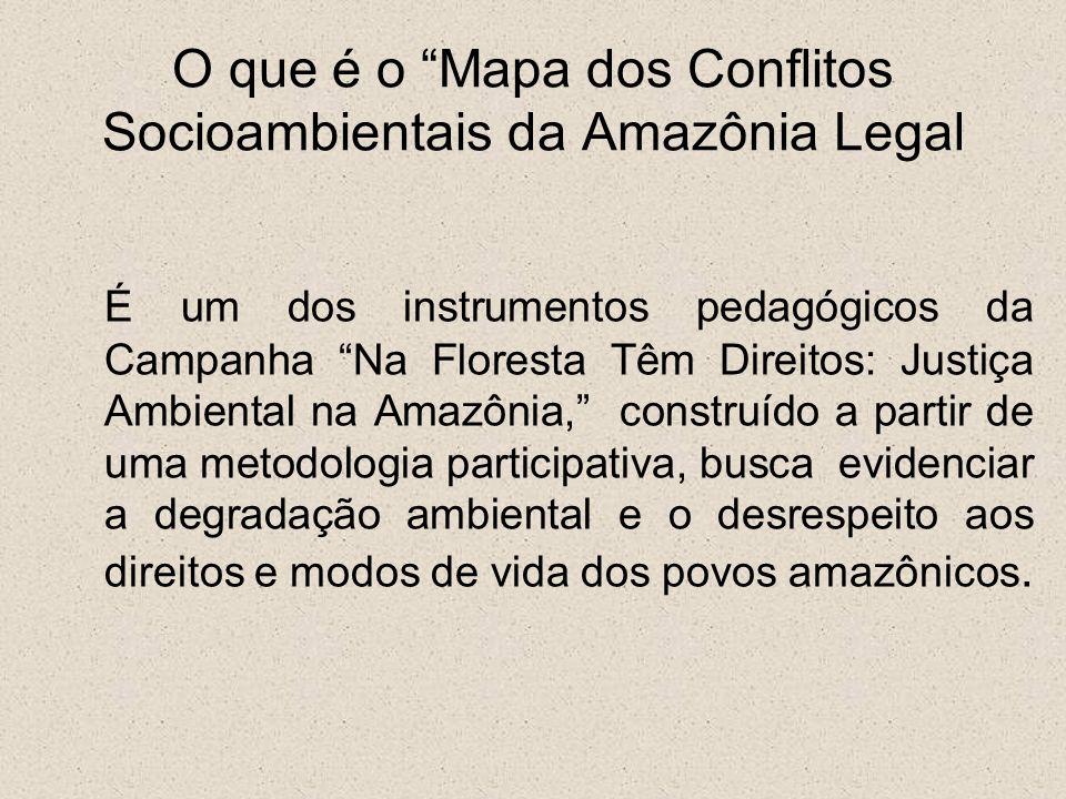 O que é o Mapa dos Conflitos Socioambientais da Amazônia Legal