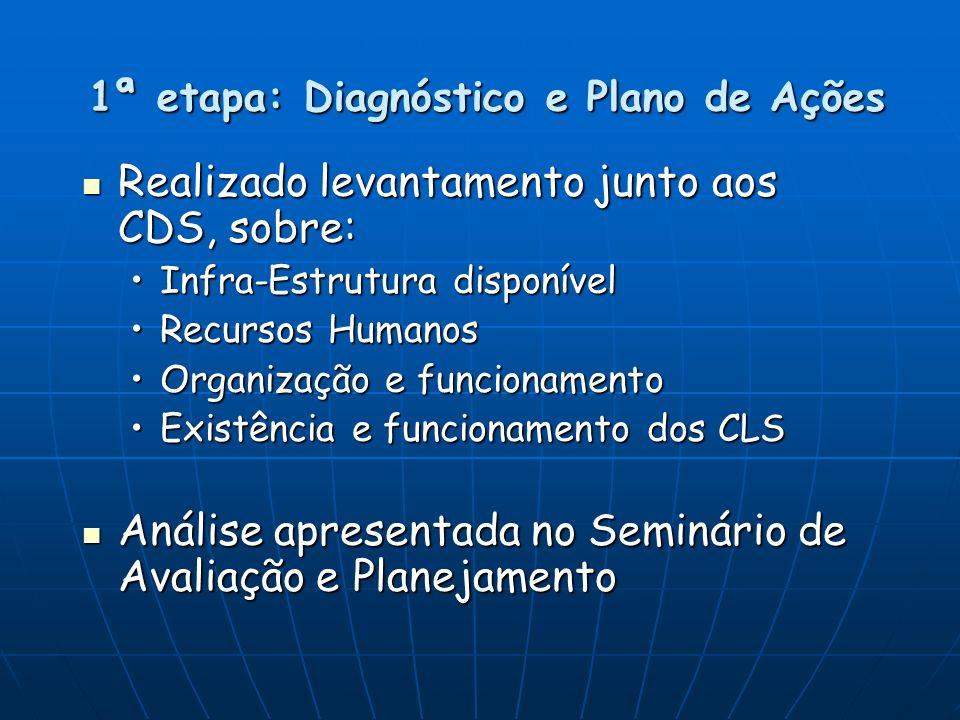 1ª etapa: Diagnóstico e Plano de Ações
