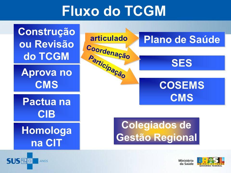 Construção ou Revisão do TCGM Colegiados de Gestão Regional