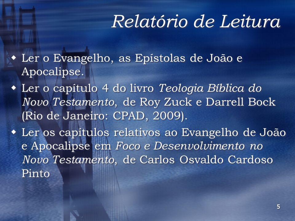 Relatório de Leitura Ler o Evangelho, as Epístolas de João e Apocalipse.
