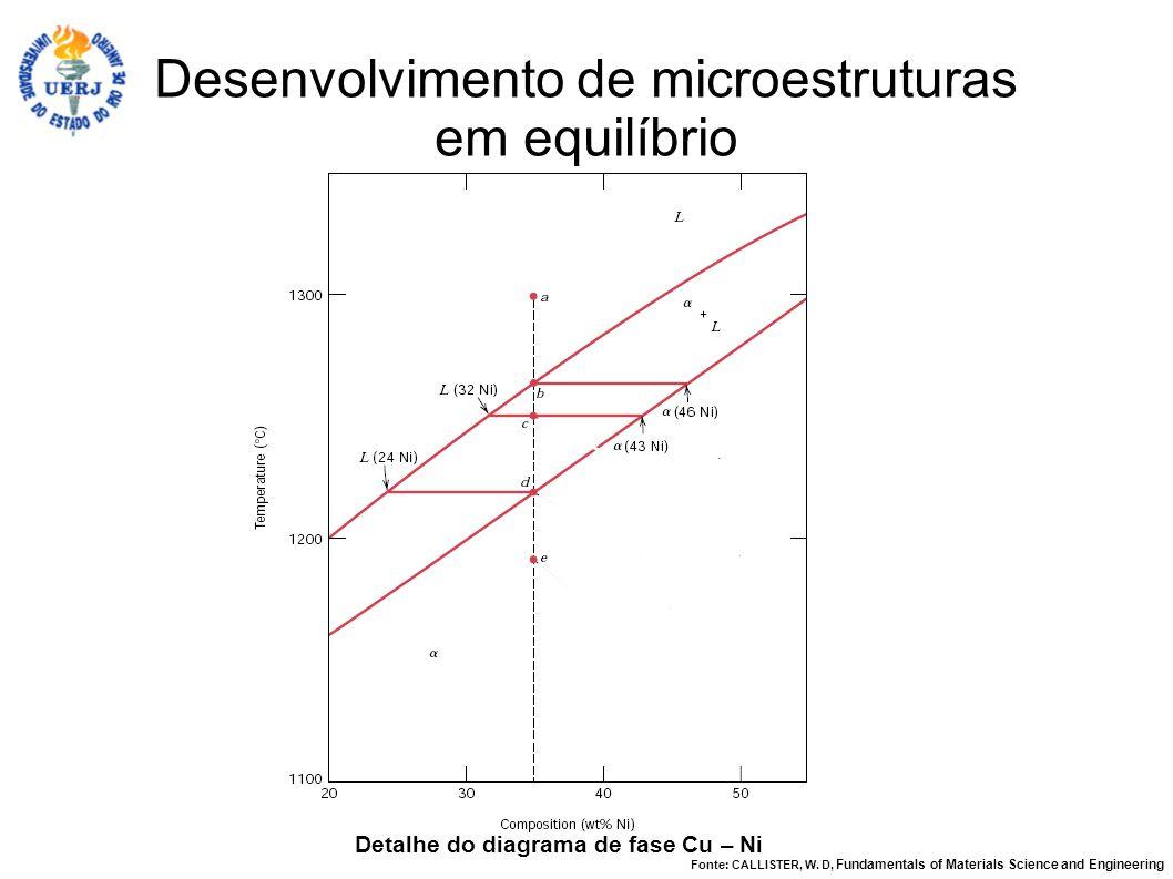 Desenvolvimento de microestruturas em equilíbrio