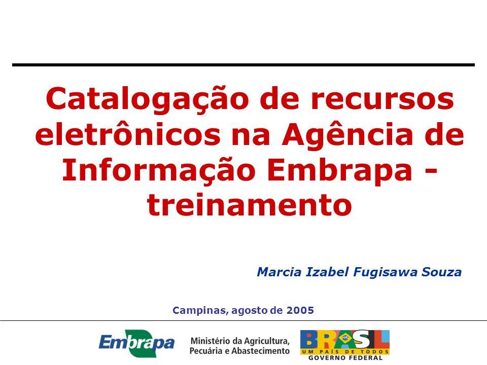 Catalogação de recursos eletrônicos na Agência de Informação Embrapa - treinamento