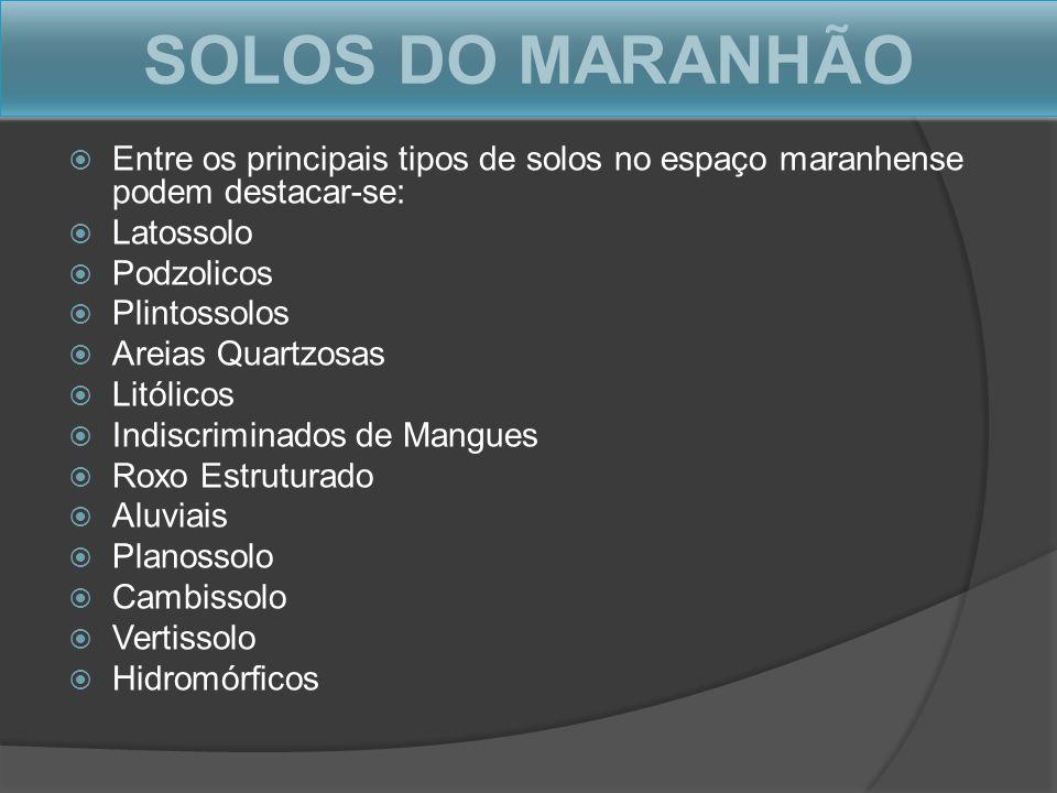 SOLOS DO MARANHÃO Entre os principais tipos de solos no espaço maranhense podem destacar-se: Latossolo.