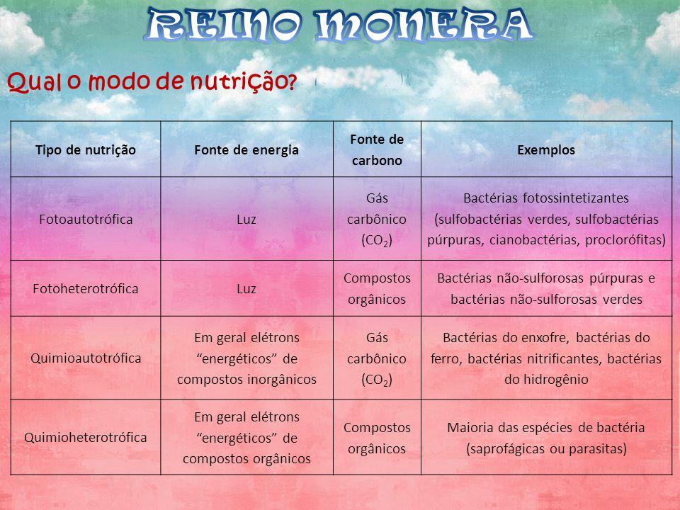 REINO MONERA Qual o modo de nutrição Tipo de nutrição