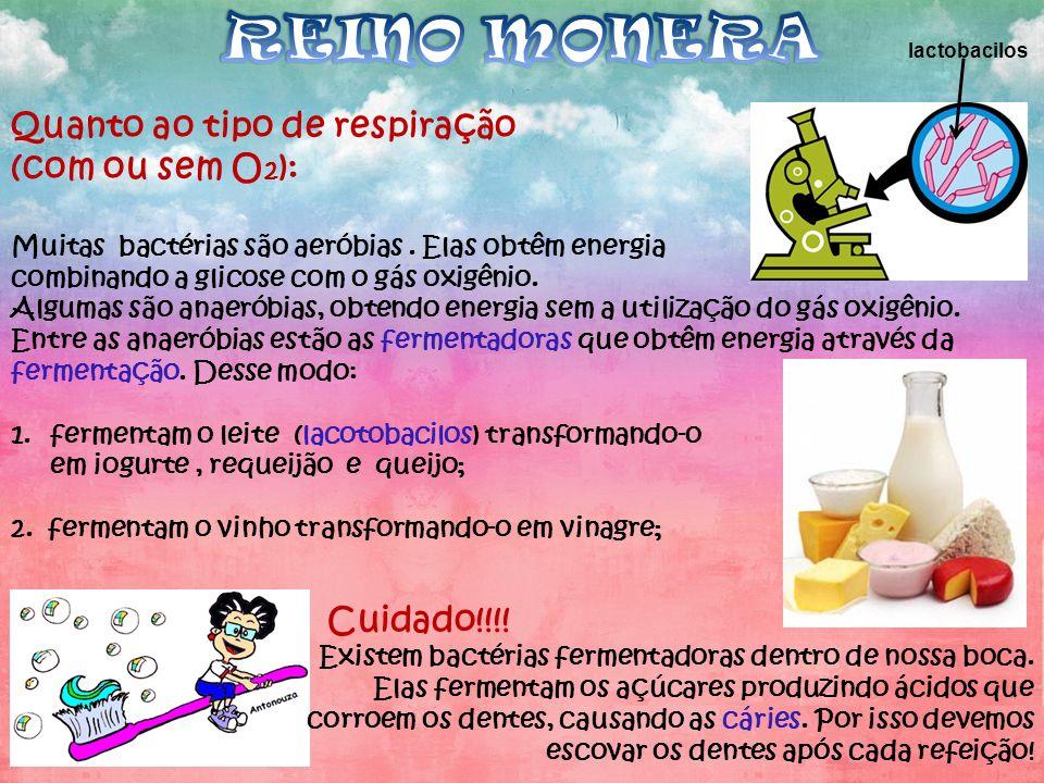 REINO MONERA Quanto ao tipo de respiração (com ou sem O2): Cuidado!!!!