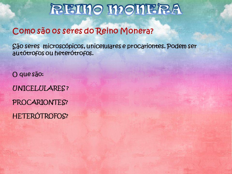 REINO MONERA Como são os seres do Reino Monera