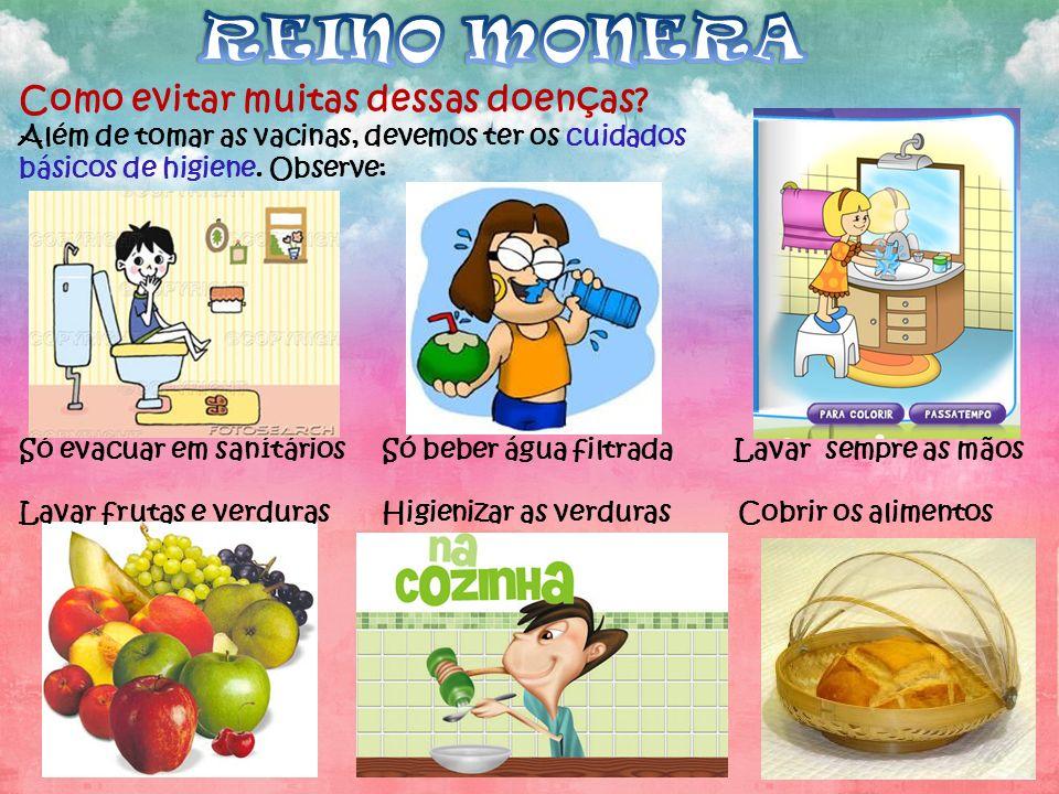 REINO MONERA Como evitar muitas dessas doenças