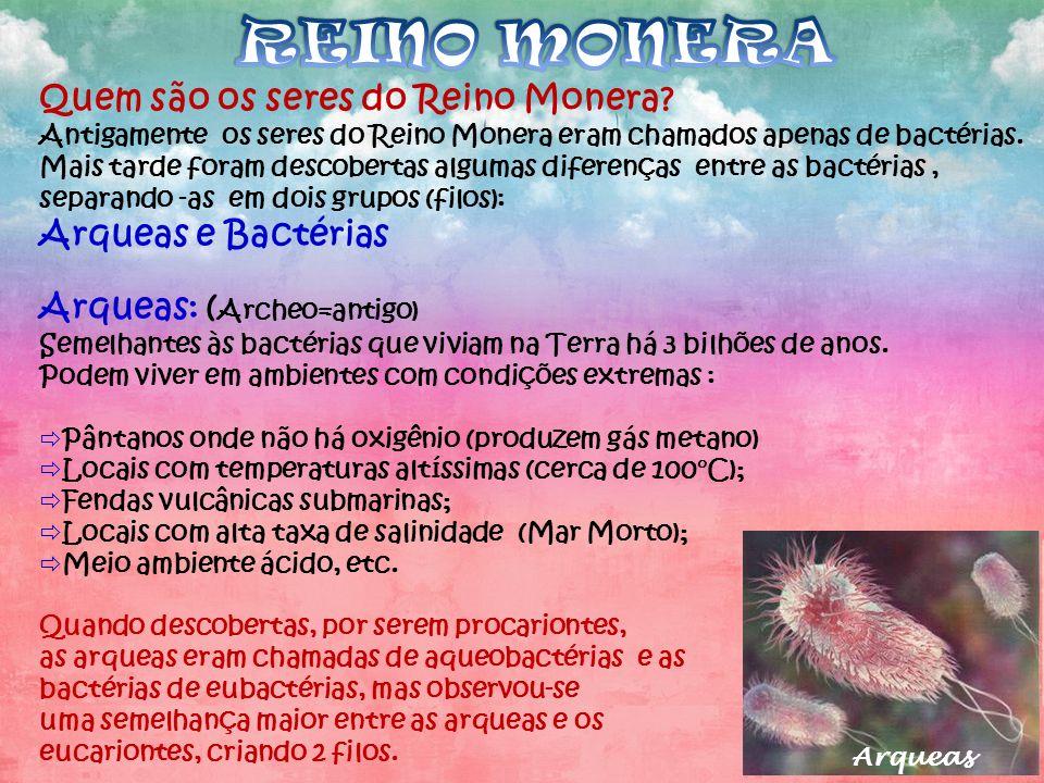 REINO MONERA Quem são os seres do Reino Monera Arqueas e Bactérias