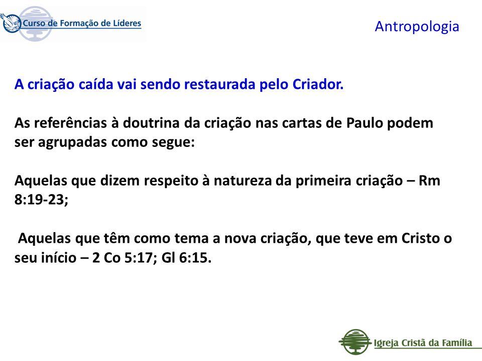 Antropologia A criação caída vai sendo restaurada pelo Criador.