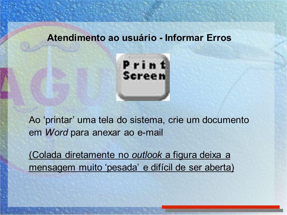Atendimento ao usuário - Informar Erros