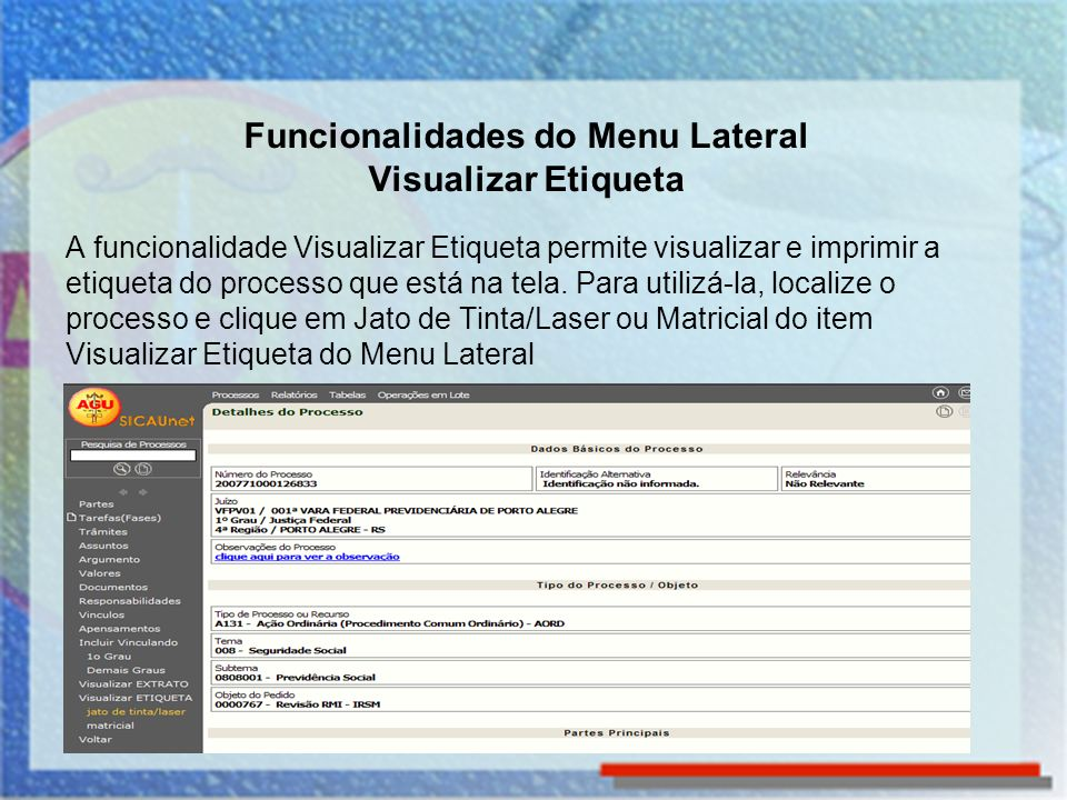 Funcionalidades do Menu Lateral Visualizar Etiqueta
