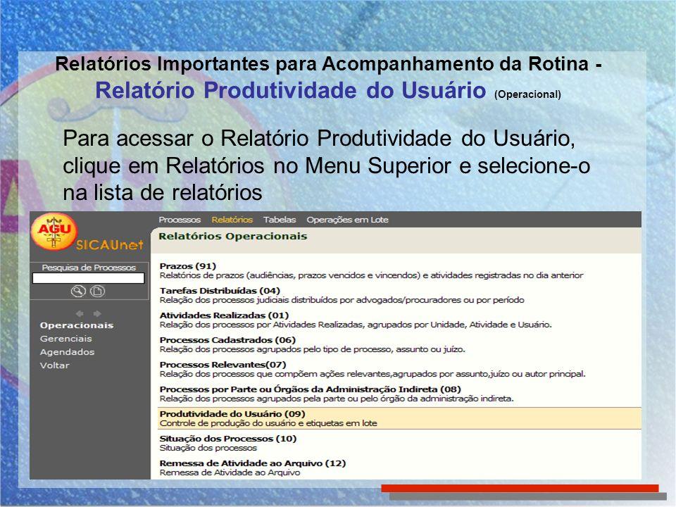 Para acessar o Relatório Produtividade do Usuário,