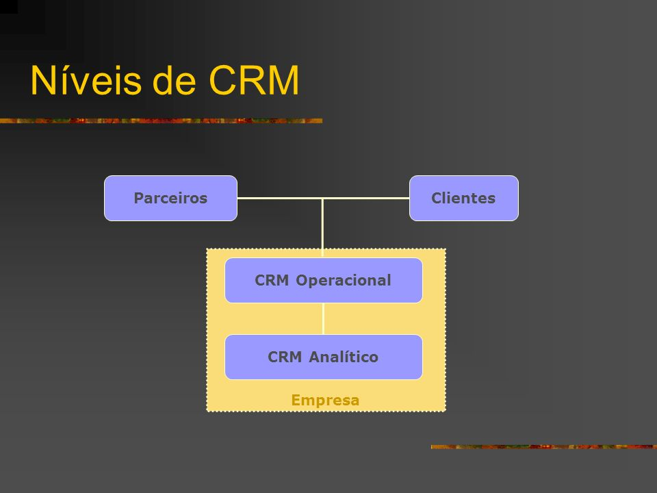 Níveis de CRM Empresa Clientes Parceiros CRM Analítico CRM Operacional