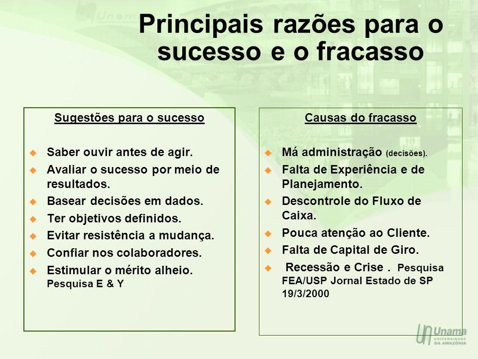 Principais razões para o sucesso e o fracasso