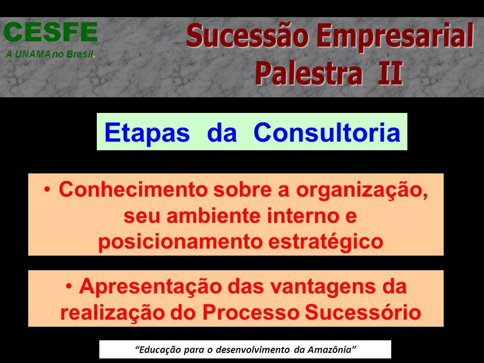 CESFE Etapas da Consultoria Sucessão Empresarial Palestra II