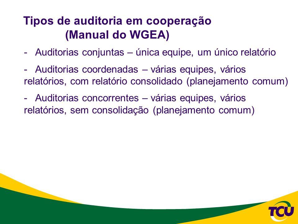 Tipos de auditoria em cooperação (Manual do WGEA)