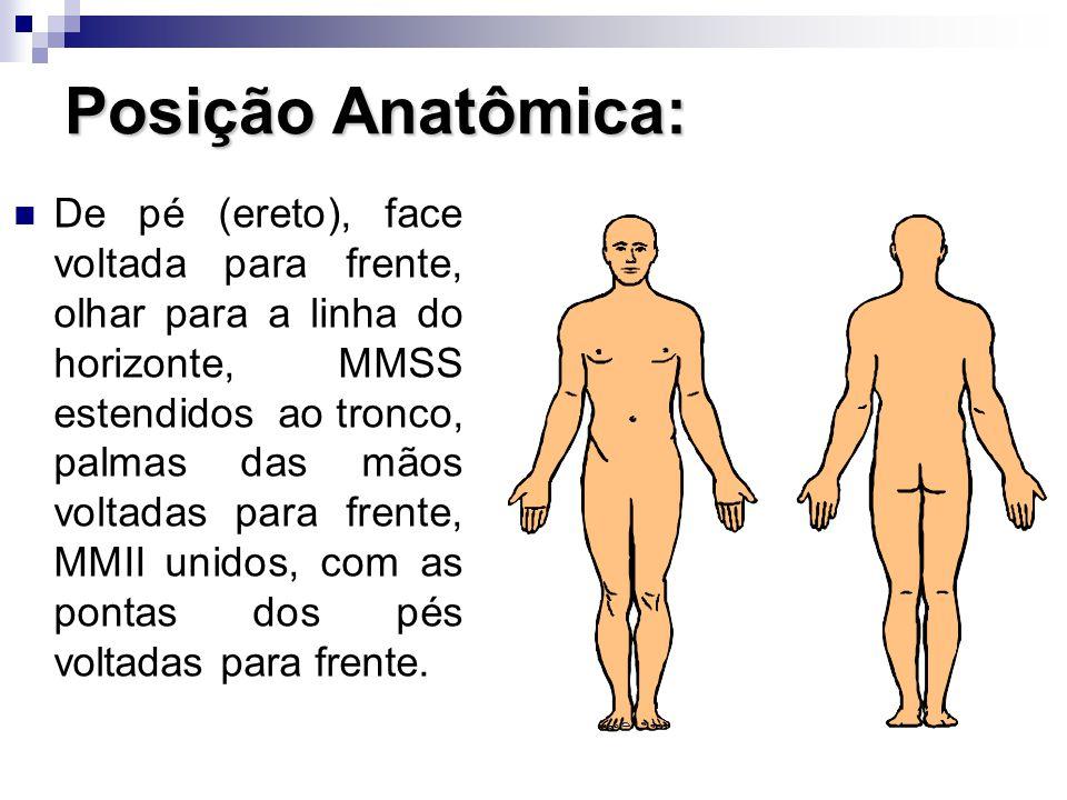 Posição Anatômica: