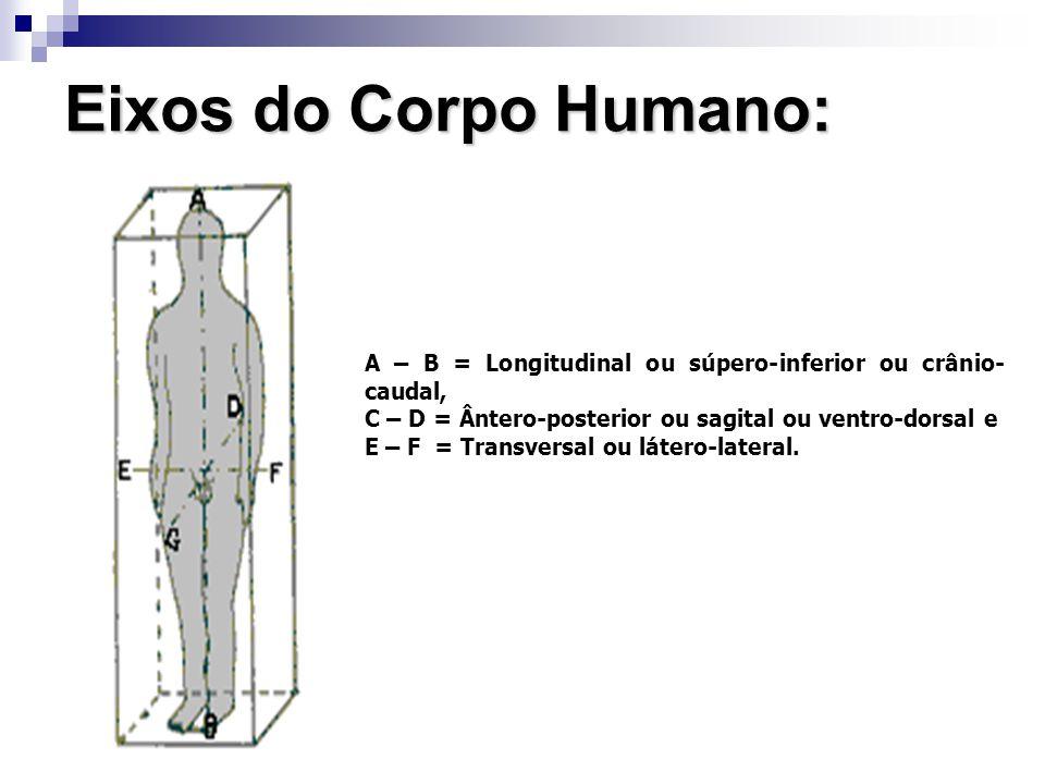 Eixos do Corpo Humano: A – B = Longitudinal ou súpero-inferior ou crânio-caudal, C – D = Ântero-posterior ou sagital ou ventro-dorsal e.