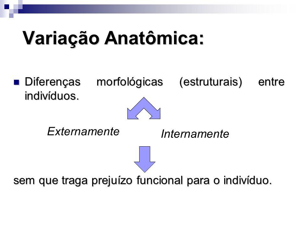 Variação Anatômica: Diferenças morfológicas (estruturais) entre indivíduos. sem que traga prejuízo funcional para o indivíduo.