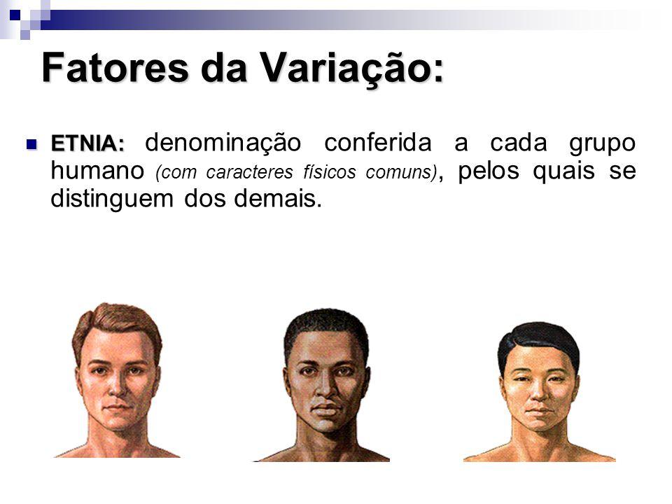 Fatores da Variação: ETNIA: denominação conferida a cada grupo humano (com caracteres físicos comuns), pelos quais se distinguem dos demais.