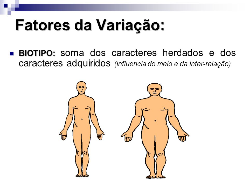 Fatores da Variação: BIOTIPO: soma dos caracteres herdados e dos caracteres adquiridos (influencia do meio e da inter-relação).