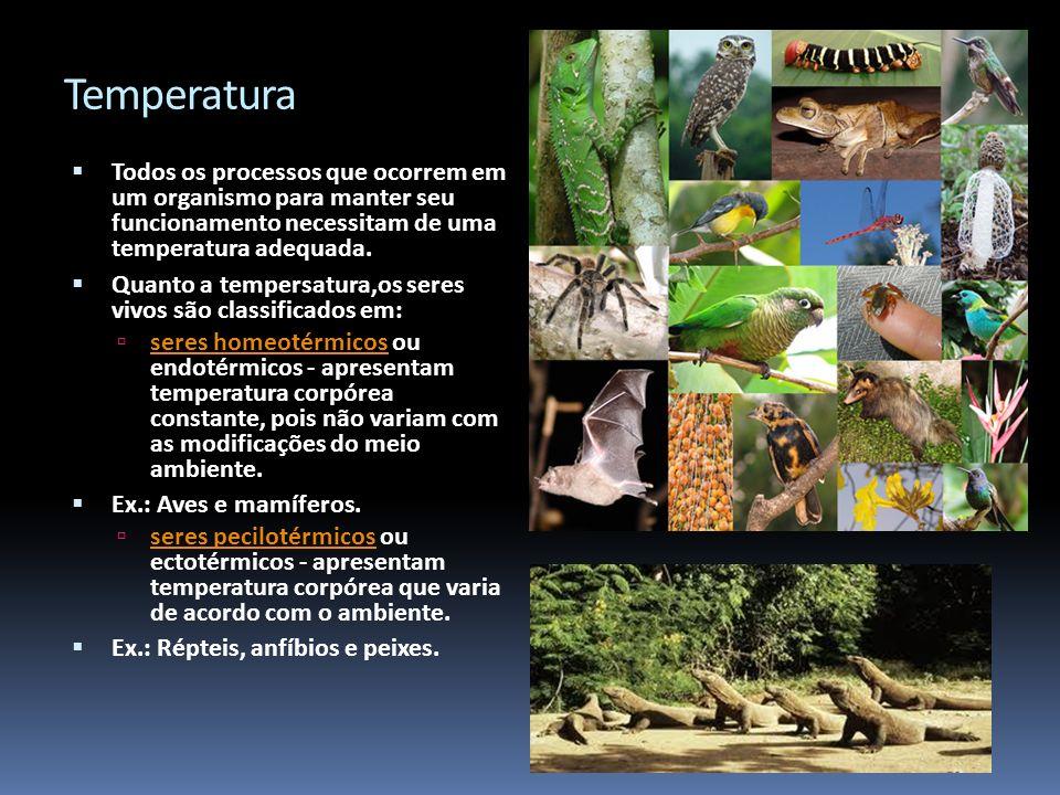 Temperatura Todos os processos que ocorrem em um organismo para manter seu funcionamento necessitam de uma temperatura adequada.