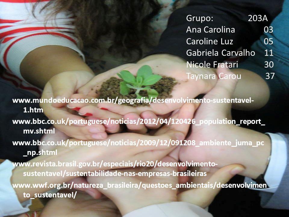 Grupo: 203A Ana Carolina 03 Caroline Luz 05 Gabriela Carvalho 11