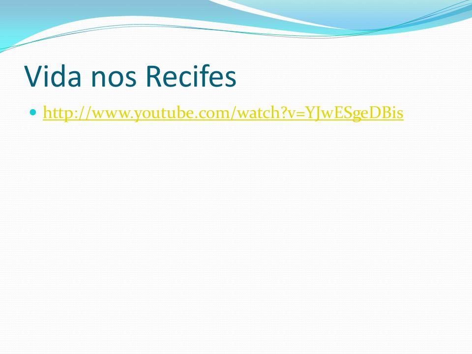 Vida nos Recifes http://www.youtube.com/watch v=YJwESgeDBis