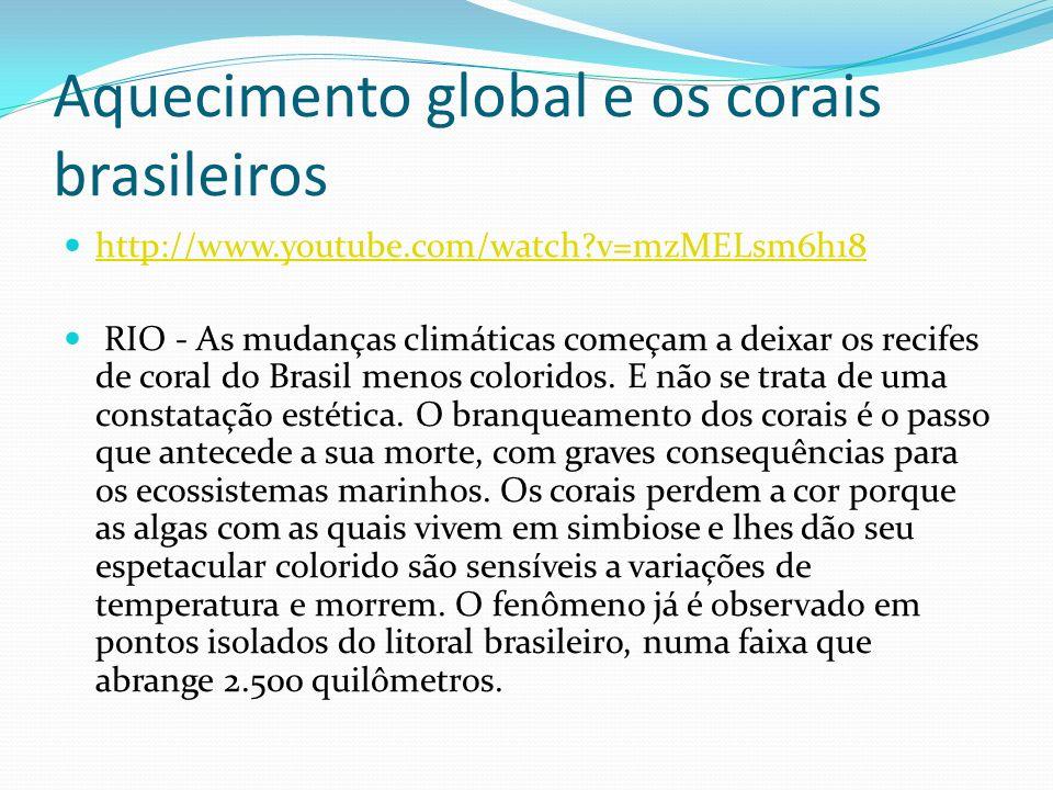 Aquecimento global e os corais brasileiros