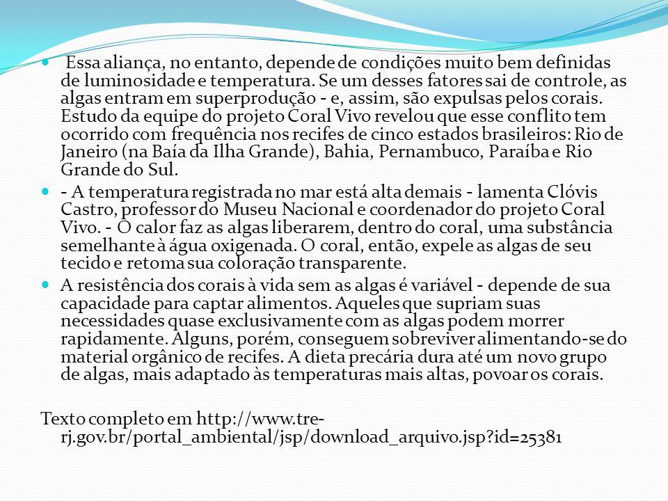 Essa aliança, no entanto, depende de condições muito bem definidas de luminosidade e temperatura. Se um desses fatores sai de controle, as algas entram em superprodução - e, assim, são expulsas pelos corais. Estudo da equipe do projeto Coral Vivo revelou que esse conflito tem ocorrido com frequência nos recifes de cinco estados brasileiros: Rio de Janeiro (na Baía da Ilha Grande), Bahia, Pernambuco, Paraíba e Rio Grande do Sul.